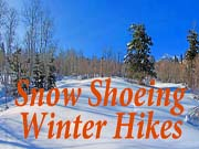 More Snow Shoeing